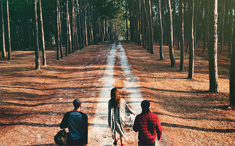Gruppe auf einem Waldweg
